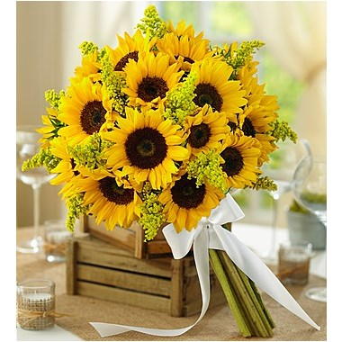 1 800 flowers country wedding all sunflower bouquet flowerama gulf breeze. Black Bedroom Furniture Sets. Home Design Ideas