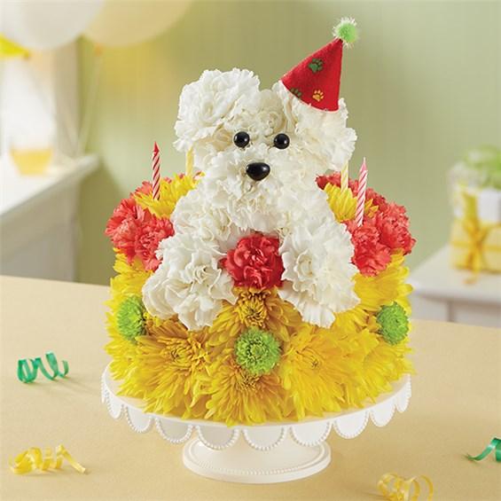 1 800 FlowersR Birthday Wishes Flower CakeTM PupcakeTM Sku 166260 HR Fd 10 04 17
